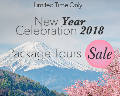 Package Tours Sale