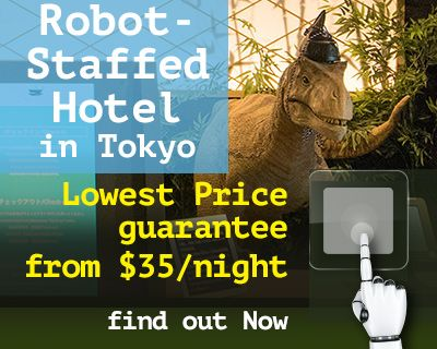 Unlock the lowest fare for Robot Hotel in Tokyo.