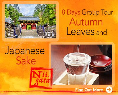 Autumn Leaves and Japanese Sake Guided Tour